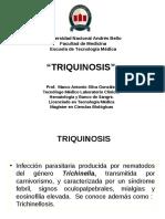 26 triquinosis