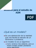 Modelos Estudio Adn