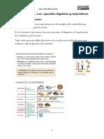 Tema 1 Los Aparatos Digestivos y Respiratorios