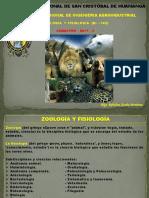 zoologia 01