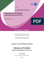 GuiaPrenatal_reunido