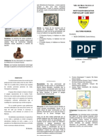 357467542-Cultura-Huanca-Triptico.docx
