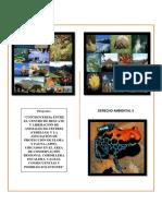 Proyecto Derecho Ambiental Oficial