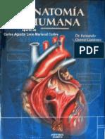 Tratado Anatomia Humana - F. Quiroz - Tomo2