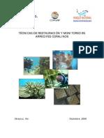 Tecnicas de Restauracion y Monitoreo El Arrecifes Coralinos