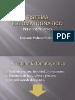 Sistema Estomatognatico [Slides]