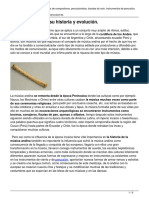 musica-andina-historia-y-evolucion.pdf