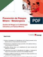 2.1.- Gestión de Riesgos en La Metalurgia Extractiva (1)