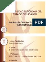 Comercio Electronico Slhm (1)