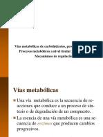 1.4-Vias-metabolicas (1).ppt