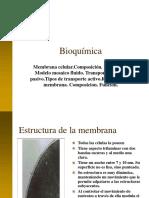 1.3-membrana-celular.ppt