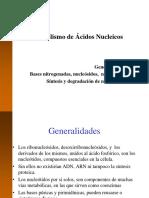 2.-Metabolismo-de-AANN.ppt