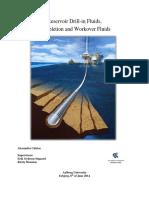 RDIFpdf.pdf