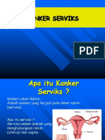 244021755 Deteksi Dini Kanker Servik Ppt