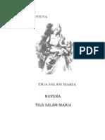 Novena 3X Salam Maria.doc