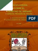 Enciclopedia Sobre El Derecho de Amparo