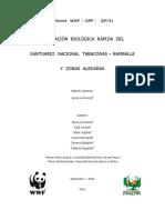 informe_final_sntn.pdf