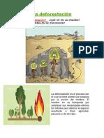 La Deforestación y Sus Causas