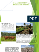 Relacion en La Agricultura y La Produccion Pecuaria