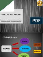 BIOLOGI MELANOSIT.pptx