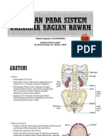 penuaan Lower Urinary Tract.pptx