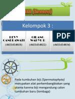 Simetri rumus dan diagram bunga biji semen kel 6 ccuart Image collections