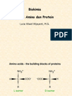 13. Protein_as Amino n Protein