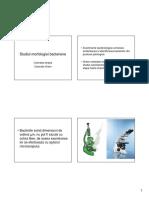 coloratia-gram.pdf