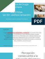 Dolor y Anestesia Fija