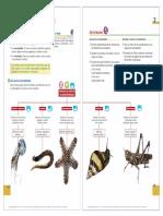 Unidad 2. Los animales.pdf