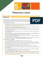 Unidad 5. Potencias y raíces.pdf