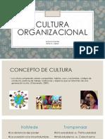Cultura Organizacional, Presentación Completa