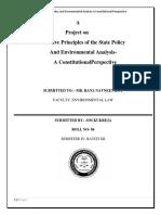 211117143-Environmental-law.docx