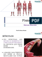 Aula 7 - Sistema Muscular