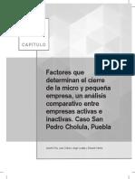Capitulo de Libro PEARSON OKM42 Factores Que Determinan El Cierre 01 SE HA 2LEC