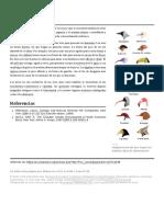 Pico (Zoología)