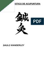 Saulo Wanderley - Manual prático de acupuntura