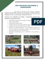 Ecofor Servicios