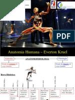 Anatomia Cefad 2017