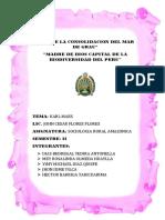 Monografia Nueva Sociologia.grupo1
