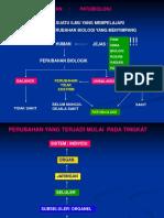 f_34273_mol-sel-bio