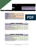 ULTIMATE_ARMS_-_WORKOUT_PLAN_by_Guru_Mann.pdf