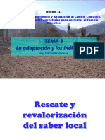 tema 3-indicadores.pdf