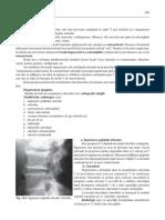 artroze radiologie.pdf