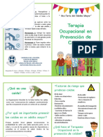 Prevención de caídas adulto mayor