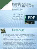 proyectodeplantasmedicinales-120607202543-phpapp01