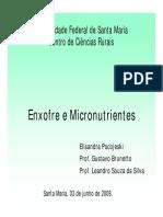 Aula-6 Enxofre e Micronutrientes