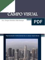 Campo Visual y perimetria