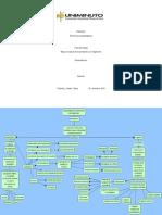 Mapa Conceptual Percepcion e Imaginacion