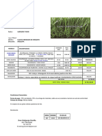 Cotización de Grass Sintetico - Euro Grass Bicolor